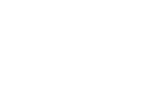 Mr. Tailor for restyling, remodel, renew clothing.